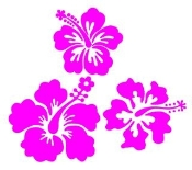 3 Hibiscus Flowers v2 Decal Sticker