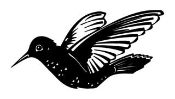 Hummingbird v2 Decal Sticker