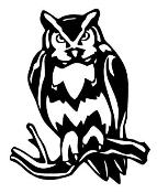 Owl v1 Decal Sticker