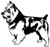 Australian Terrier Decal Sticker