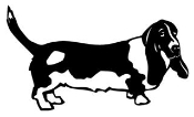 Bassett Hound Decal Sticker