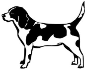 Beagle Decal Sticker