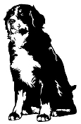 Bernese Mountain Dog Decal Sticker