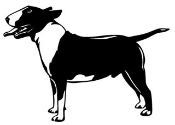 Bull Terrier Decal Sticker