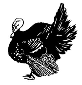 Turkey v2 Decal Sticker