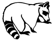 Raccoon v2 Decal Sticker