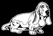 Bassett Hound v3 Decal Sticker