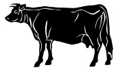 Cattle v3 Decal Sticker