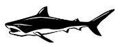 Shark v4 Decal Sticker