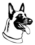 Belgian Malinois Head Decal Sticker