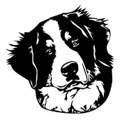Bernese Mountain Dog Head Decal Sticker