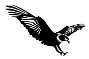 Eagle v11 Decal Sticker
