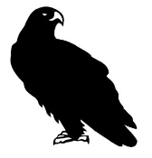 Eagle Silhouette v3 Decal Sticker