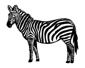 Zebra v1 Decal Sticker