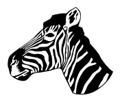 Zebra Head Decal Sticker