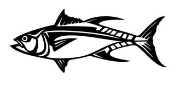Fish v6 Decal Sticker