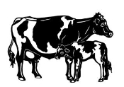 Cow and Calf v2 Decal Sticker