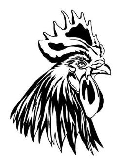 Rooster head decal funny rooster decal