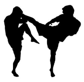 MMA Kick v2 Decal Sticker