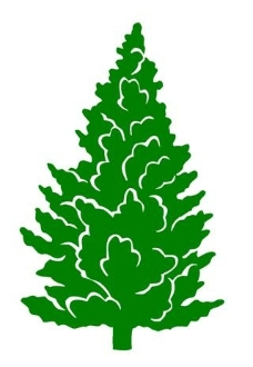 Evergreen Tree Decal Sticker