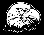 Bald Eagle Head 8 Decal Sticker