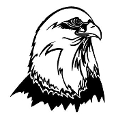 Bald Eagle Head 9 Decal Sticker