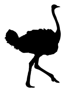 Ostrich Silhouette v1 Decal Sticker