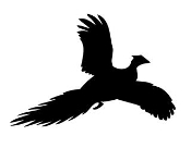 Pheasant Silhouette Decal Sticker