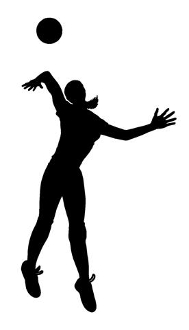 Volleyball Player Silhouette v3 Decal Sticker