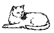Cat v19 Decal Sticker