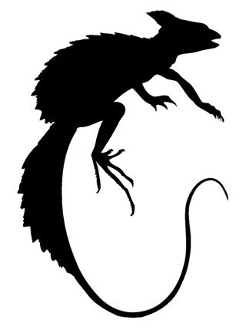 Lizard Silhouette v7 Decal Sticker