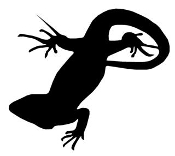 Lizard Silhouette v10 Decal Sticker