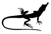 Lizard Silhouette v12 Decal Sticker