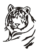 Tiger Head v5 Decal Sticker