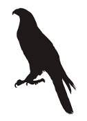 Hawk Silhouette Decal Sticker