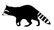 Raccoon v4 Decal Sticker