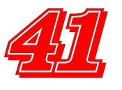 Busch 41 Decal Sticker