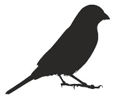 Bunting Bird Silhouette Decal Sticker