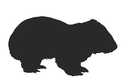 Wombat Silhouette Decal Sticker