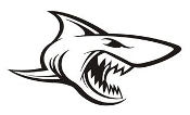 Shark v12 Decal Sticker