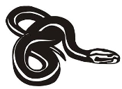 Snake v10 Decal Sticker