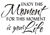 Enjoy this Moment Decal