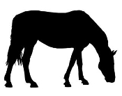 Horse Silhouette v12 Decal Sticker