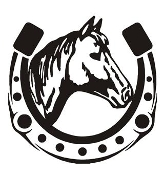 Horseshoe Design Decal Sticker