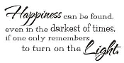 Happiness can be found in the Darkest of times Decal