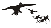Ducks Flying Silhouette v4 Decal Sticker