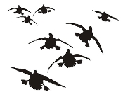 Ducks Flying Silhouette v7 Decal Sticker
