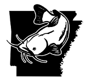 Arkansas Catfish Decal Sticker