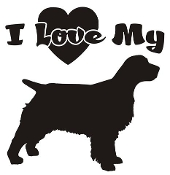 I Love My Springer Spaniel Decal Sticker