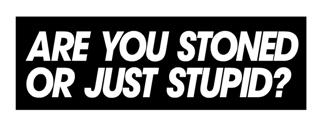 Are You Stoned Decal Sticker
